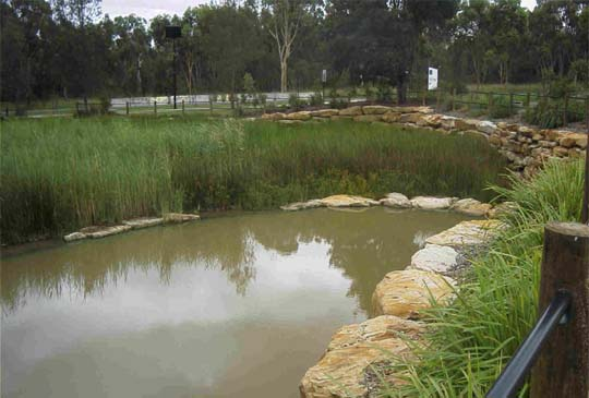 A Reed Bed Filter System at Liverpool Sydney